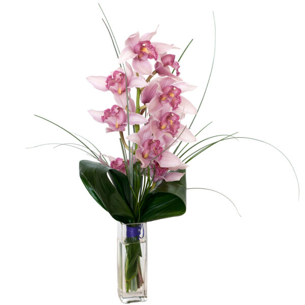 Detalle de orquídea cymbidium