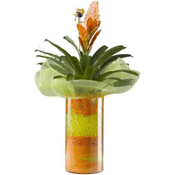 Vriesea con jarrón de cristal
