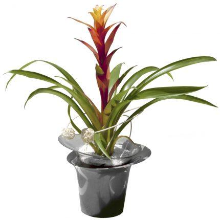 planta-en-jarron-de-metal
