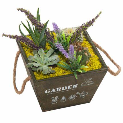 centro-cactus