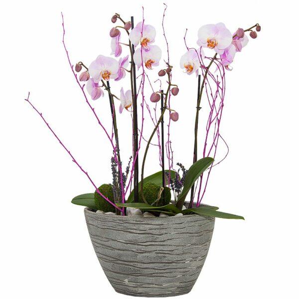 Cerámica con dos orquídeas